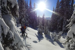 Backcountry skiing near Wells
